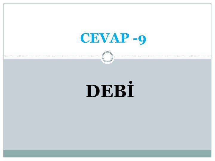 CEVAP -9