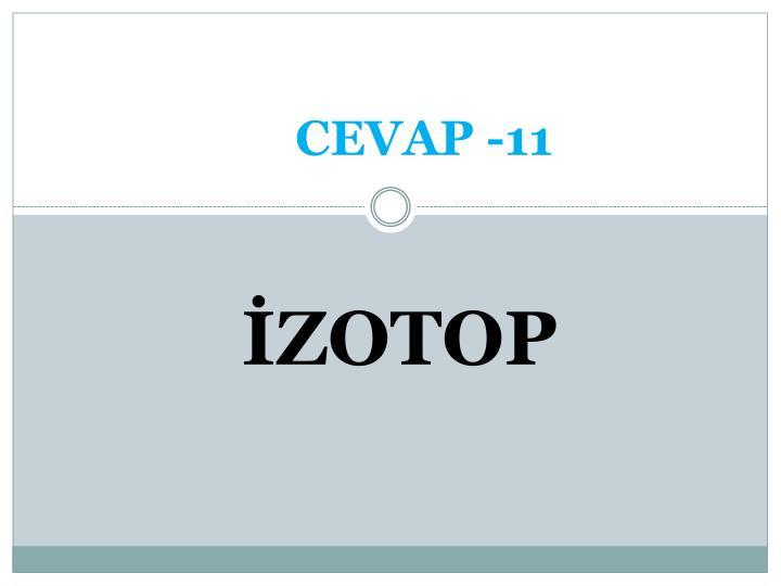 CEVAP -11