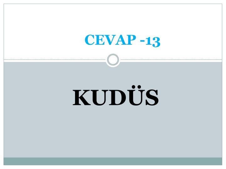 CEVAP -13