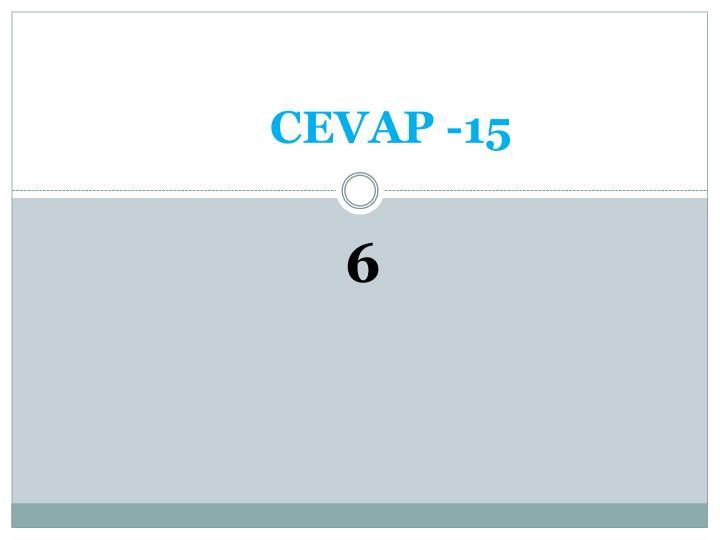 CEVAP -15