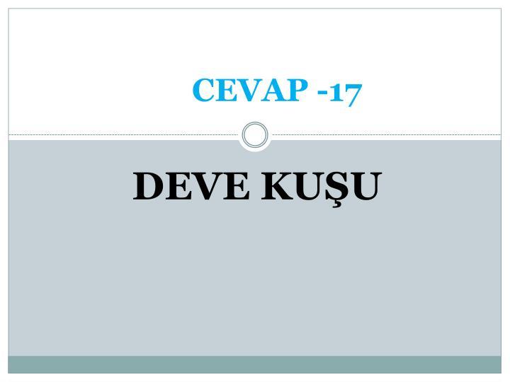 CEVAP -17