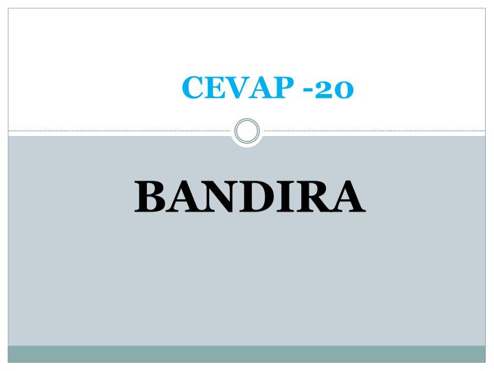 CEVAP -20