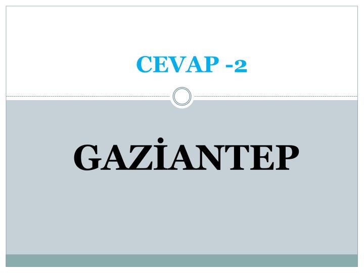 CEVAP -2