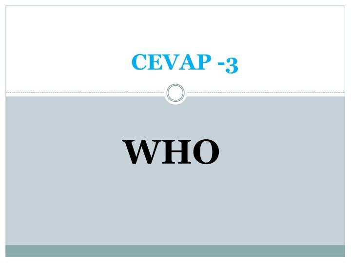 CEVAP -3