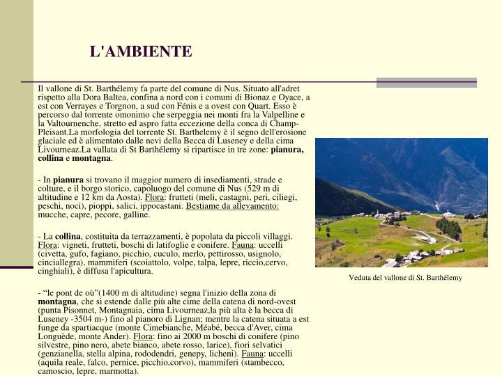 L'AMBIENTE