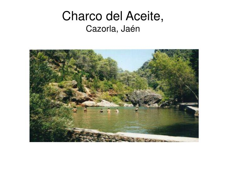 Charco del Aceite,