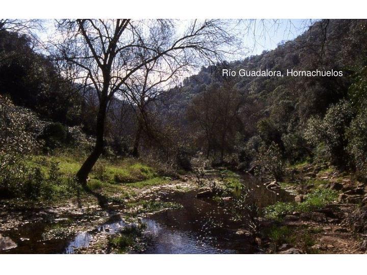 Río Guadalora, Hornachuelos