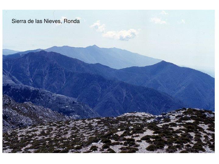 Sierra de las Nieves, Ronda