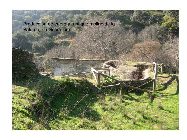 Producción de energía: antiguo molino de la Paloma, río Guadalora