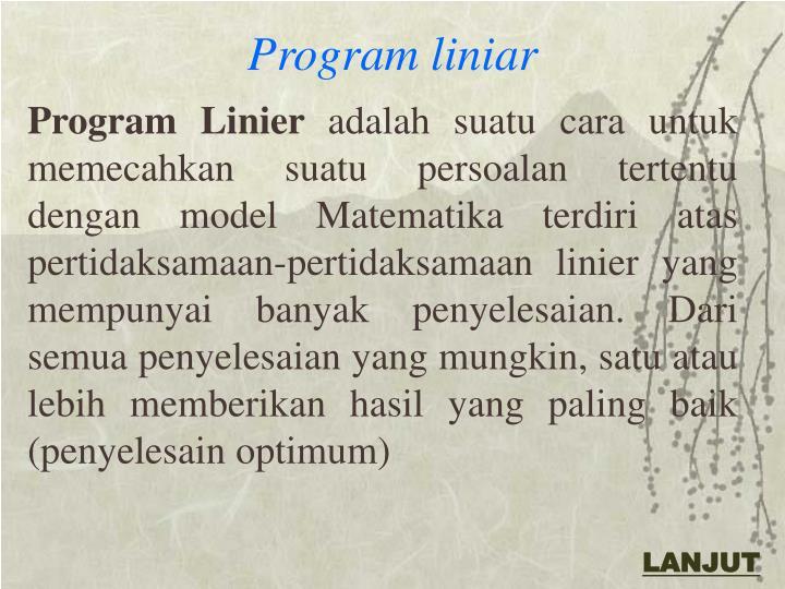Program liniar