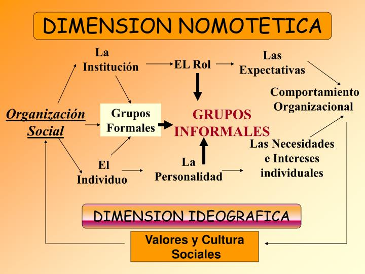 DIMENSION NOMOTETICA