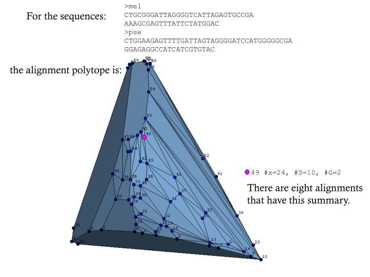 49 #x=24, #S=10, #G=2