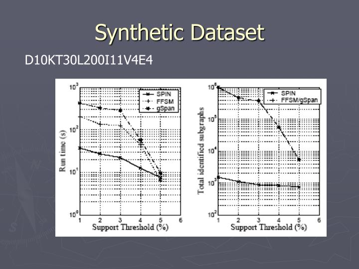 Synthetic Dataset