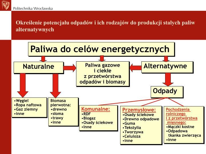 Paliwa do celów energetycznych