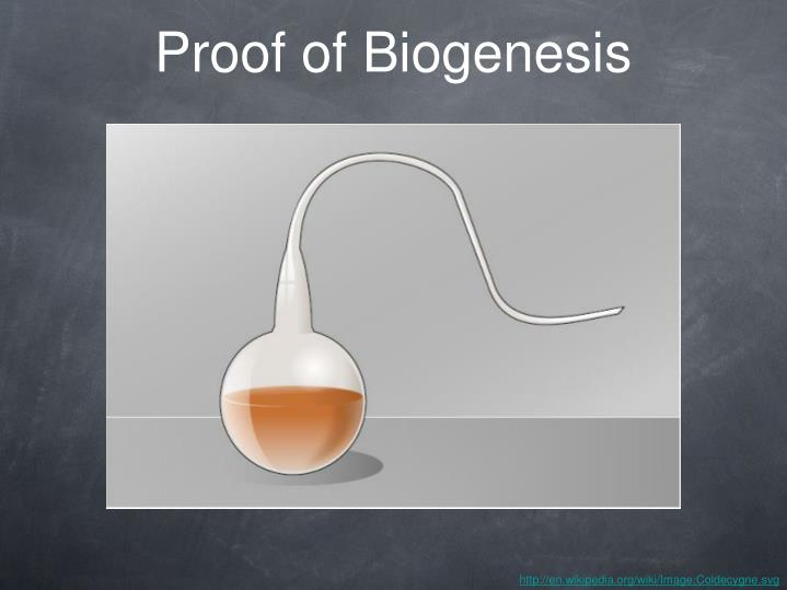 Proof of Biogenesis