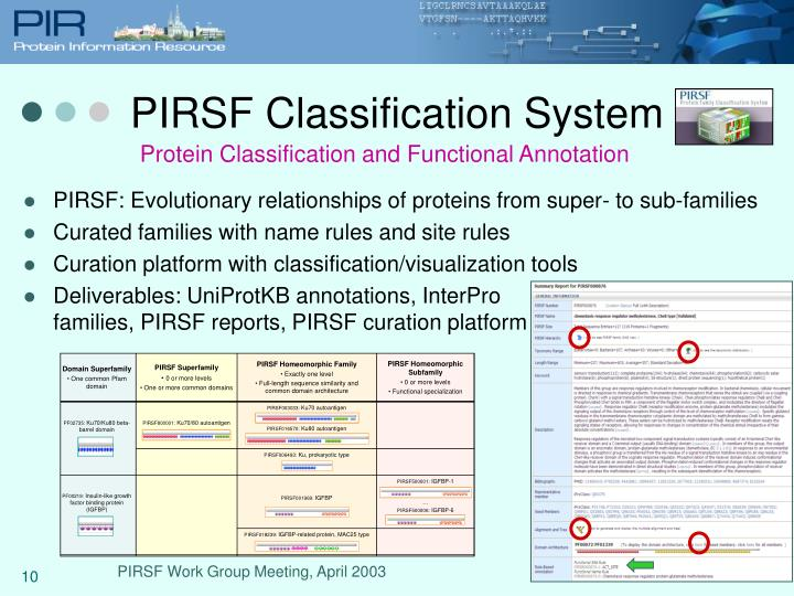 PIRSF Classification System