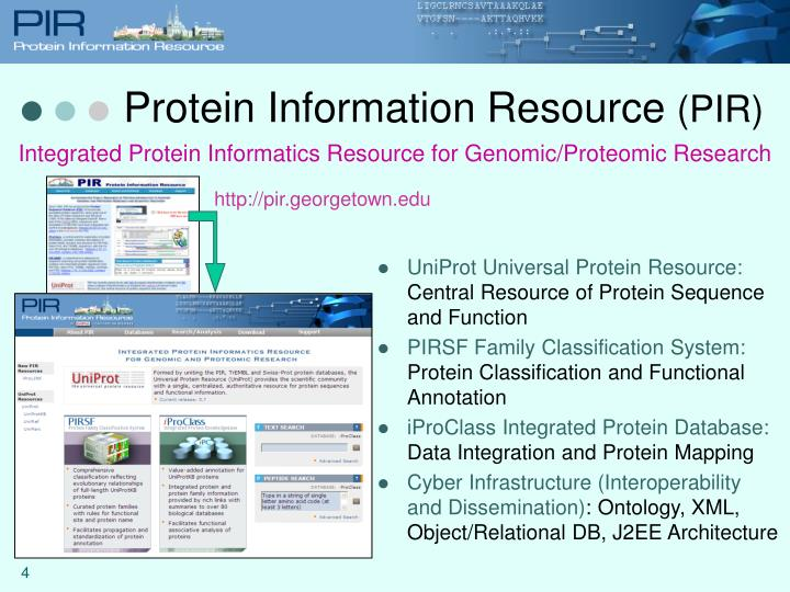 Protein Information Resource