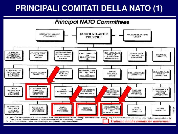 PRINCIPALI COMITATI DELLA NATO (1)
