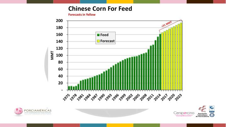 Chinese Corn For Feed
