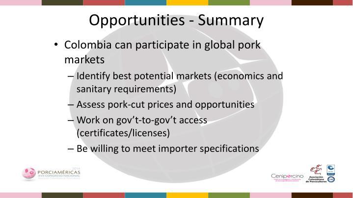 Opportunities - Summary