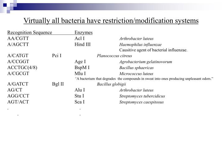 Virtually all bacteria have restriction/modification systems