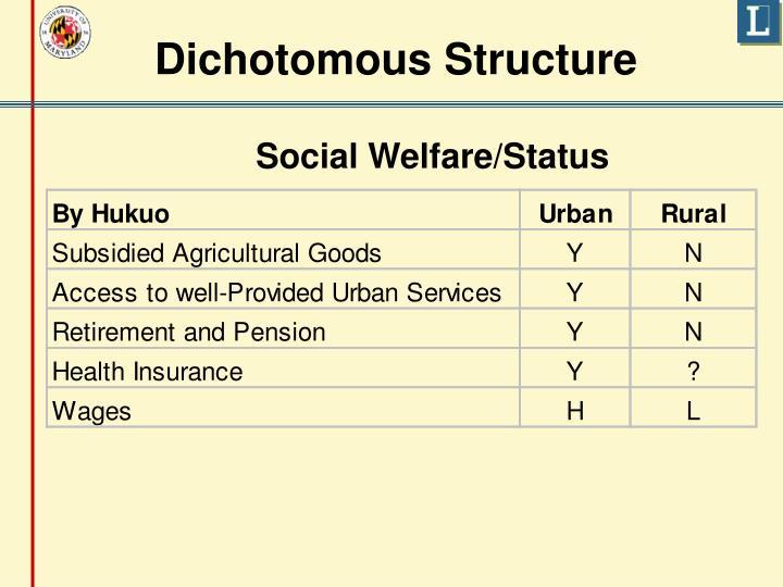 Dichotomous Structure