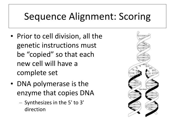 Sequence Alignment: Scoring
