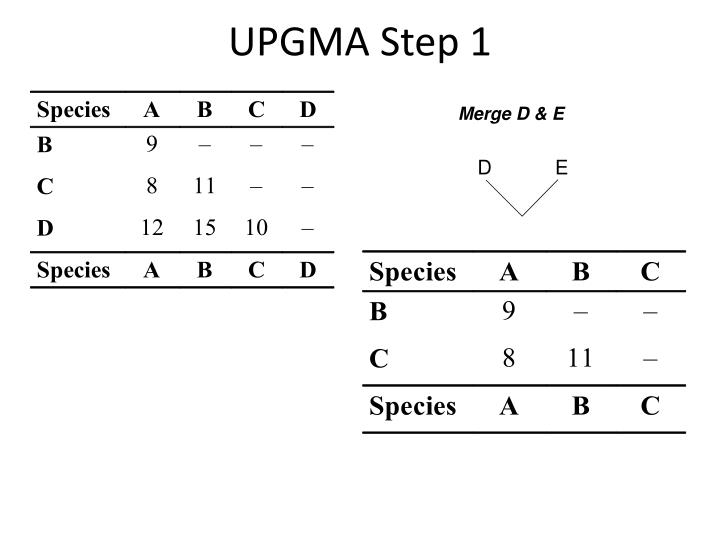 UPGMA Step 1