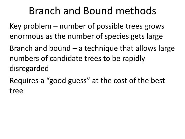 Branch and Bound methods