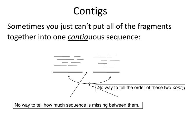Contigs