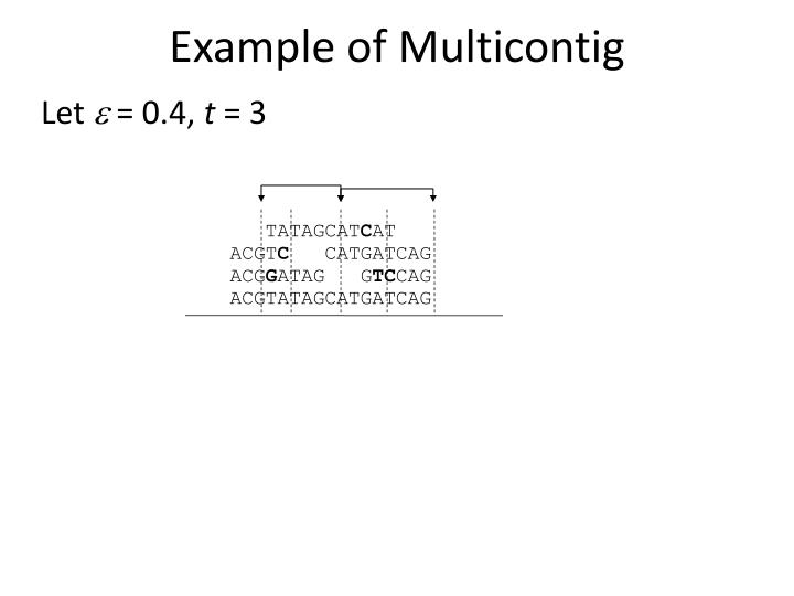Example of Multicontig