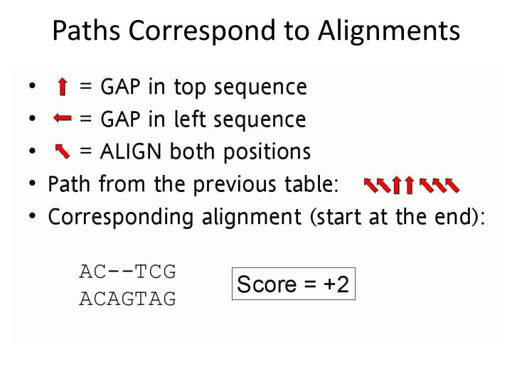 Paths Correspond to Alignments