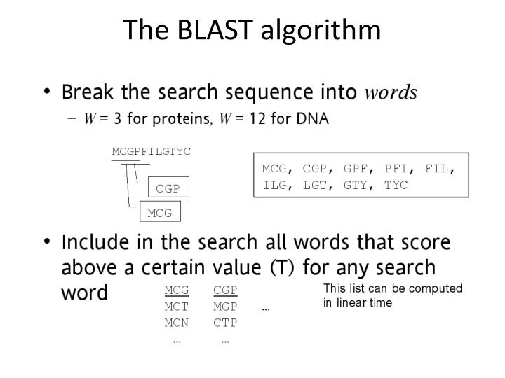 The BLAST algorithm