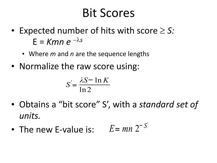 Bit Scores