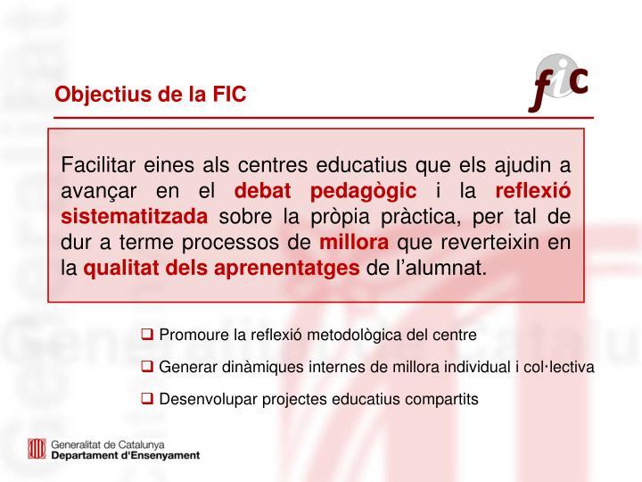 Objectius de la FIC