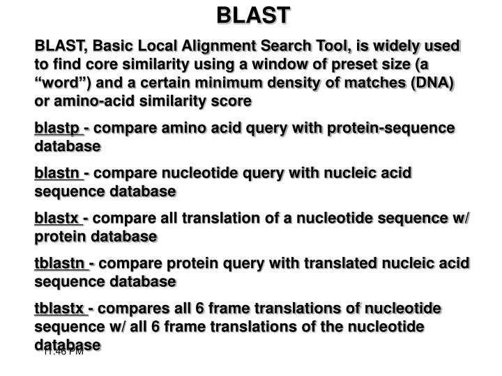 "BLAST, Basic Local Alignment Search Tool, is widely used to find core similarity using a window of preset size (a ""word"") and a certain minimum density of matches (DNA) or amino-acid similarity score"