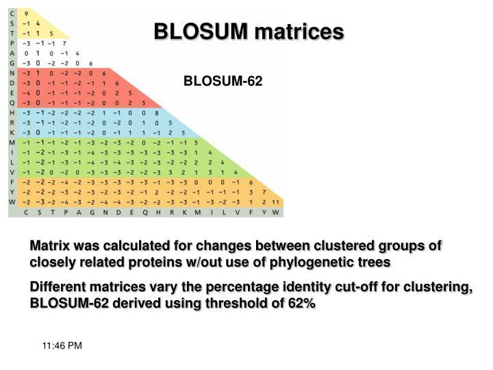 BLOSUM-62
