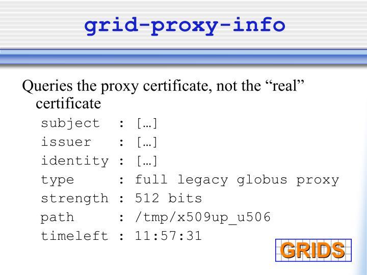 grid-proxy-info
