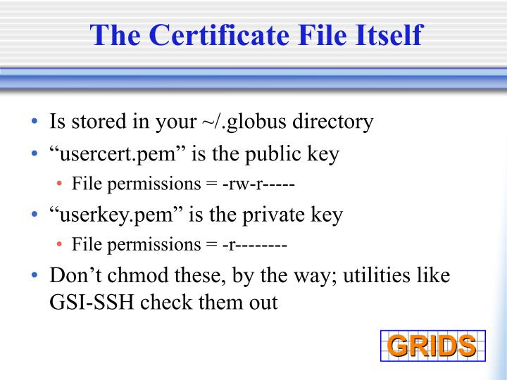 The Certificate File Itself
