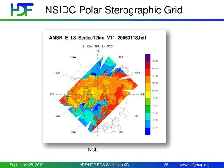 NSIDC Polar