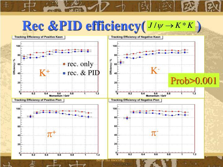Rec &PID efficiency(               )