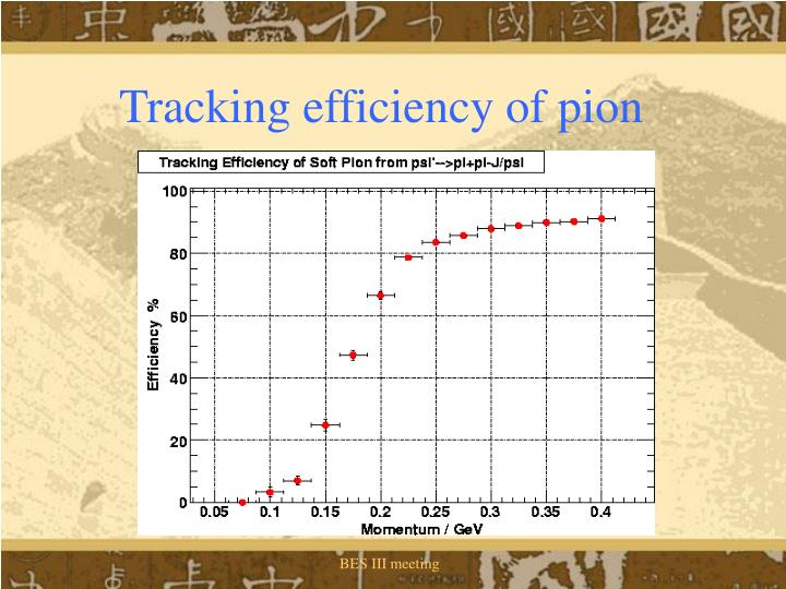 Tracking efficiency of pion