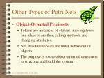 other types of petri nets1