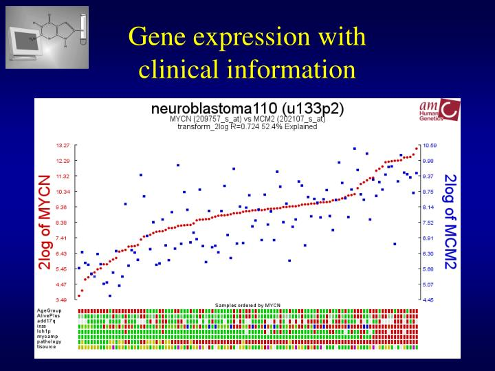 Gene expression with
