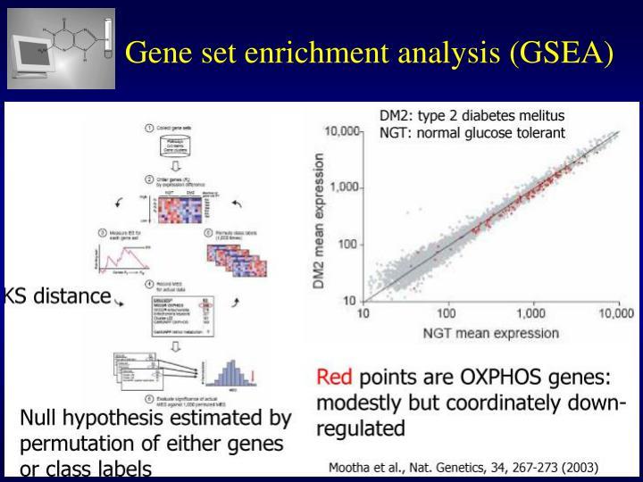 Gene set enrichment analysis (GSEA)