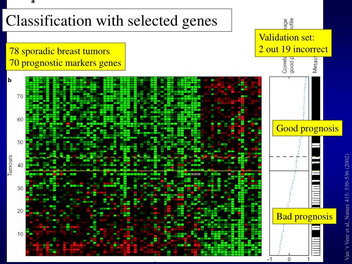 Classification with selected genes