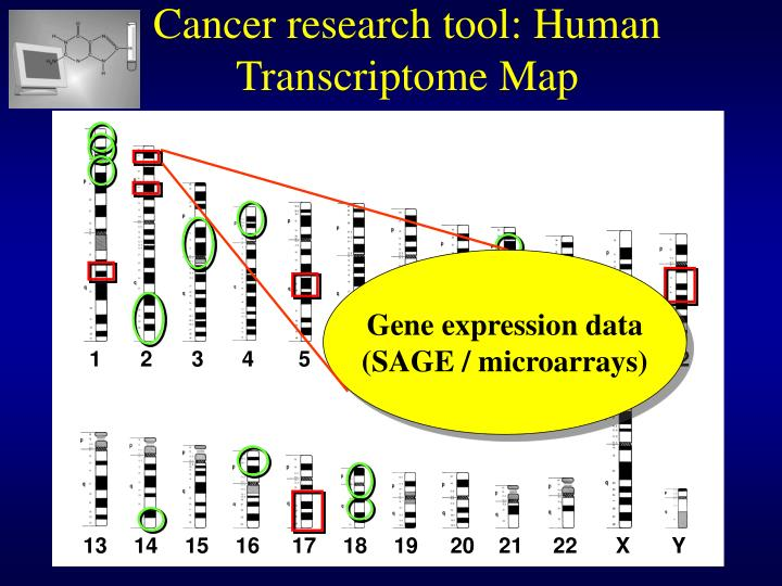 Cancer research tool: Human Transcriptome Map