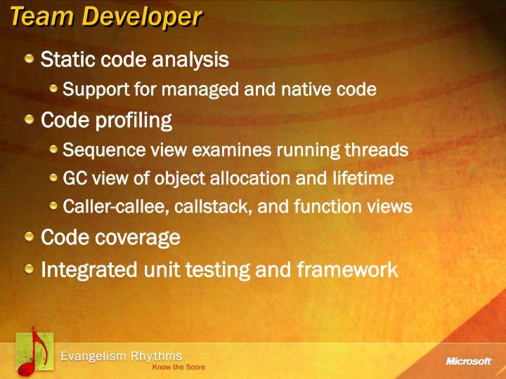 Team Developer