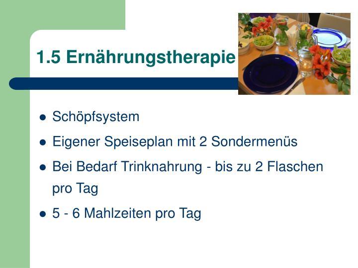 1.5 Ernährungstherapie