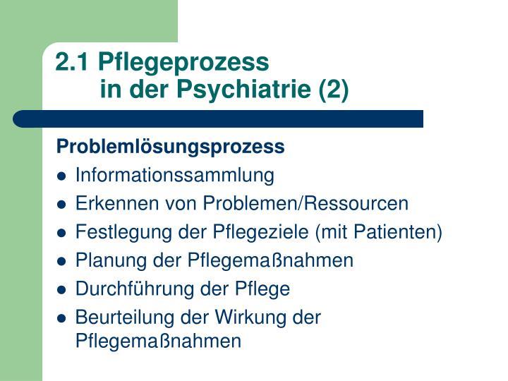 2.1 Pflegeprozess